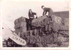 hay making in 1960s