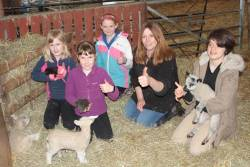 Our farm clubs